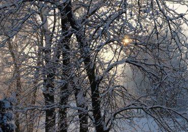 Uwaga! Intensywne opady śniegu.