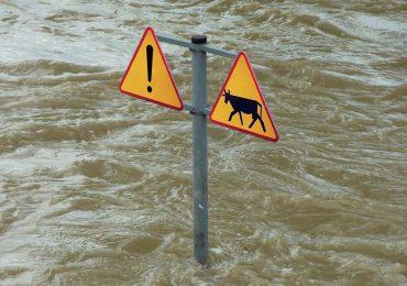 Dla rolników - odszkodowania za szkody wyrządzone przez pogodę