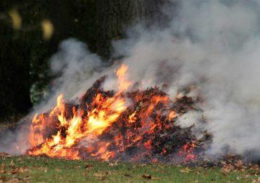 Nie pal liści, bo grozi za to kara. Lepiej spakuj do worków i zgłoś odbiór.